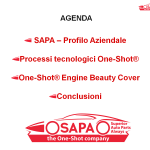 The key points of SAPA's participation to Smart Plastic in Arese
